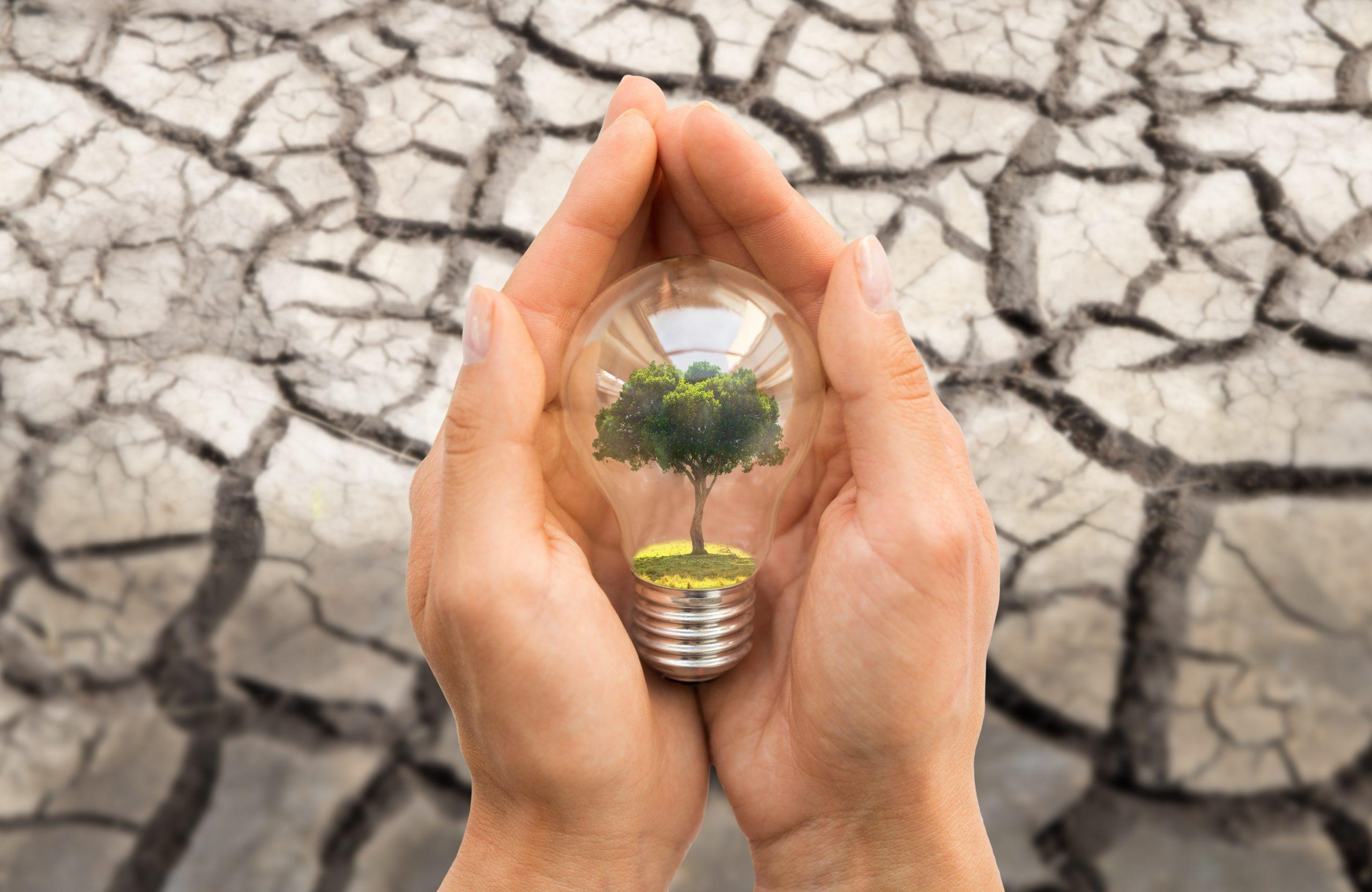 save money on utilities